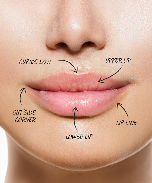 makeup artist secrets lips